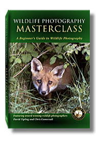 Picture of Masterclass DVD