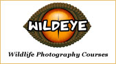Wildeye Courses